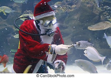 Santa Clause Feeding Fishes - Santa Clause feeding fishes at...
