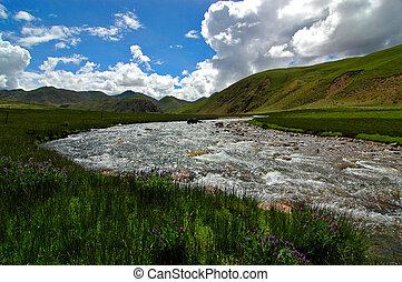 Quiet Pastures - Wild pastures of Tibet