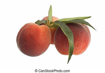 peaches on white