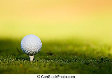 Golf Ball - Golf ball on tee