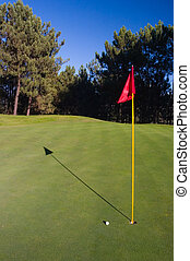 Golf Hole - Golf hole with red flag, golf ball and shadow