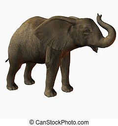 BabyElephant Trumpet - 3D Animal
