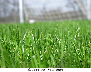 soccer net - Close-up of green grass with soccer net in the...