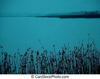 Dusk Lake - a reedy lake at dusk