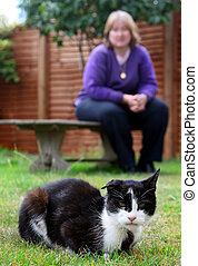 Saved - Rescued cat being over looked by new loving owner