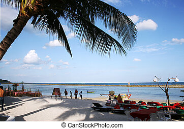 Busy Tropical Beach - Beach with palm tree, people and...