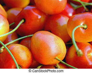 Double color cherries - close-up of ripe double color...