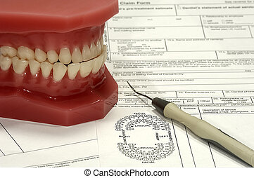 Dental Claim - Photo of Dental Claim Forms and Model of...