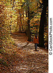 Autumn Hike - Woman hiking on Meech lake trail in Gatineau,...