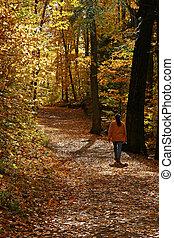 Autumn Hike - Woman hiking on Meech lake trail in Gatineau,...