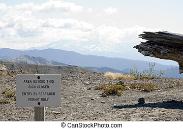 Stock Photo of Ash at Windy Ridge, Mount St Helens, with Mt...