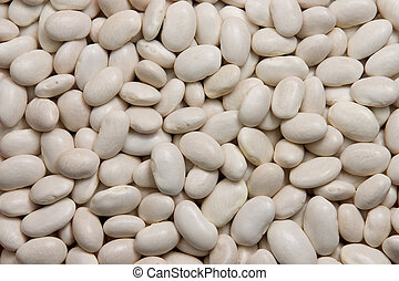 white kidney beans - Background of white kidney beans