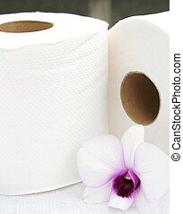 Bathroom Tissue - Rolls of Bathroom Tissue