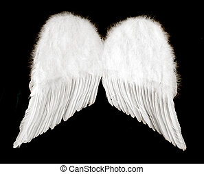 Ángel, alas, aislado, negro