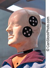 Crash Dummy - This crash dummy shows the cuts and bruises...