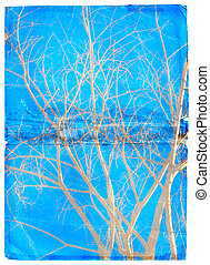 Grunge blue background with trees - Naked tree branches...