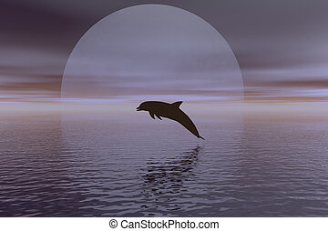 dolphin and moon