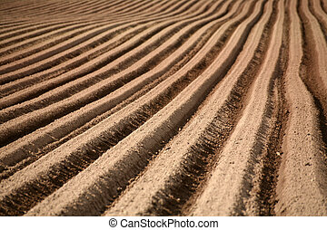 Furrows - Plowed field in Germany