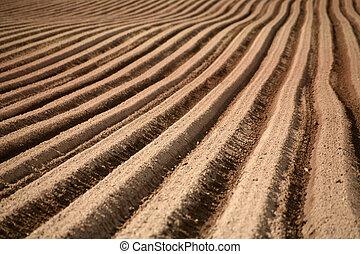Furrows - Plowed field in Germany