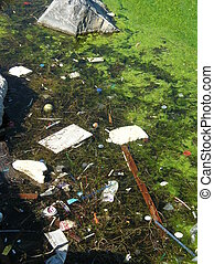 water pollution - some trash in the water
