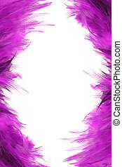 feather borders - funky purple feather border and frame
