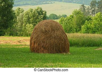 Haystack at meadow