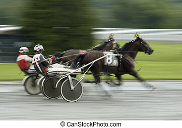 harness race close call - two horses coming to finish line...