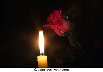 Candle lit rose - A red rose partly illuminated by a burning...