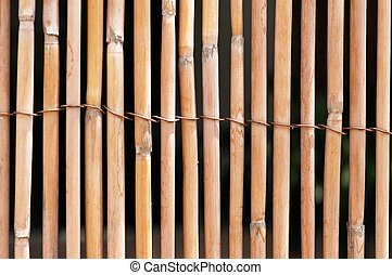 Bamboo fence - Old bamboo fence