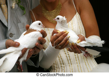 Wedding pigeons - Two wedding pigeons in hands of a...