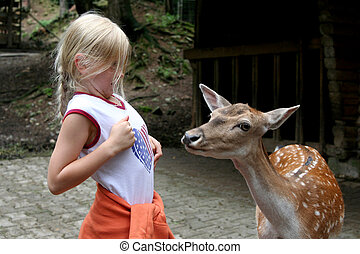 In the zoo - Little girl and deer. Zoo.