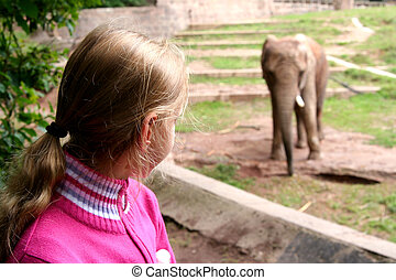 In the zoo - Young girl and elephant Zoo Nuremberg