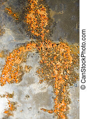 Rusty Grunge Background - Photo of a rusty orange grunge...