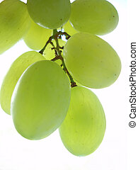 green grapes - Close-up of an bunch of green grapes on white...