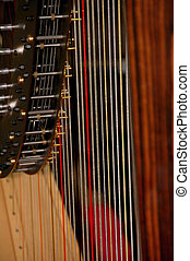 Harp Strings - Close-up of the strings of a Harp