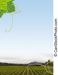 Vineyard frame - Vineyard theme border - A4 with 7mm trims
