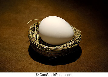 Egg - Photo of a Nest and an Egg