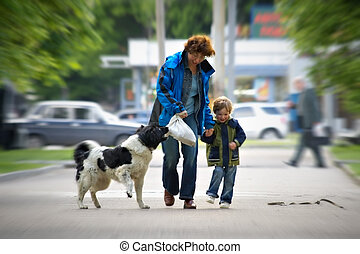 Happy family in the big city on walk with a dog