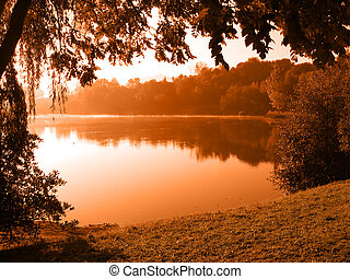 Peaceful lake - Tree by the lake with fog floating over the...