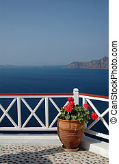 incredible santorini island view greece - santorini flowers...