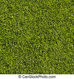 Grass, seamless - Seamlessly tileable image of putting green...