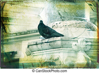 Grunge dove with textured border - grunge illustration of...