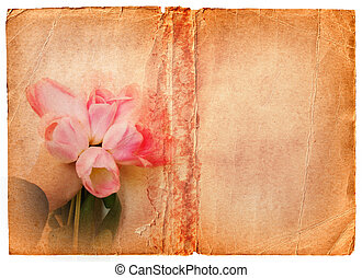 grunge book page with pink tulips - pale damaged edge book...