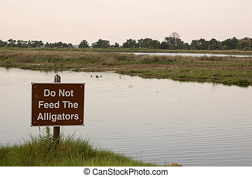 Don\\\'t Feed Alligator - The sign warns people not to feed...