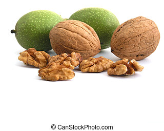 walnut - OLYMPUS DIGITAL CAMERA fresh walnuts on white...