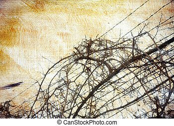 Grunge background with grape-vine over barbed wire - Warm...