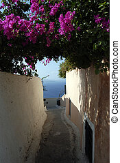 Alley in Santorini