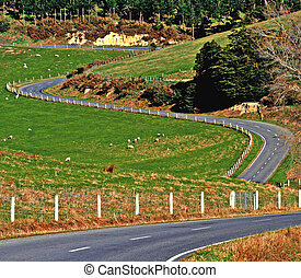 Winding Road - Winding road through rural New Zealand