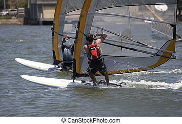 Racing Sailboarders - Sailboarder in a race