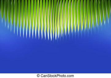 Palm fringe